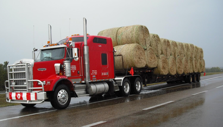 Dale hauling bales for Ivan Janssen